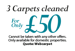 Carpets Cleaning offer